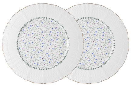 Набор обеденных тарелок Грация, 27 см, 2 шт. C2-DR_2-K2126 Colombo