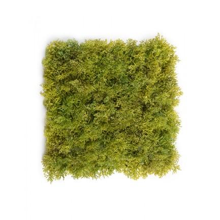 Мох Ягель коврик, 25х25 см, светло-зеленый микс со светло-коричневым 20.072029LGB-S Treez