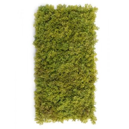 Мох Ягель коврик, 25х50 см, светло-зеленый микс со светло-коричневым 20.072029LGB-M Treez