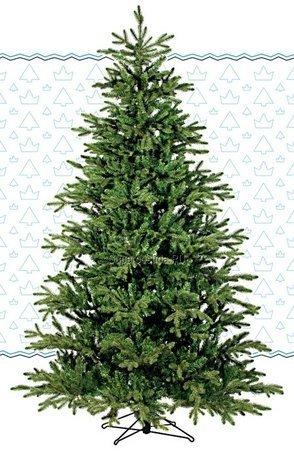 Black Box Сосна Ирландская, 155 см, зеленая