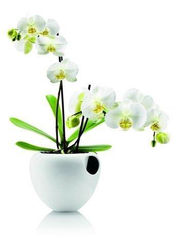 Eva Solo Горшок для орхидеи Orchid pot, белый, 18.2x18.5x14.5 см 568240 Eva Solo eva solo диспенсер для кофейных капсул eva solo 7 9 см