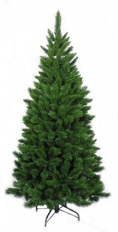 Triumph Tree Ель Триумф Норд, стройная, 120 см, зеленая