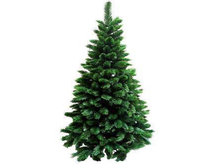 Triumph Tree Ель Триумф Норд, стройная, 230 см, зеленая