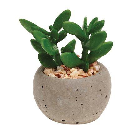 Gardman Горшок с растением Succulent Pot Plant, 6х8.5 см, серый 02860