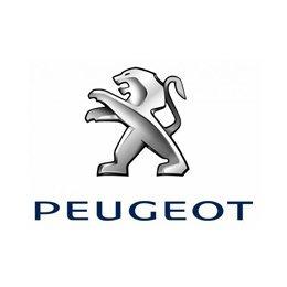 Peugeot Vin