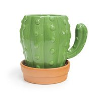 Balvi Кружка Cactus (450 мл), 12.5х14.4х10.5 см, с блюдцем, зеленая