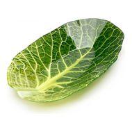 Walmer Салатник Leaf Lettuce, 15.6x25.7х4 см