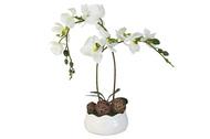 Dream Garden Декоративные цветы Орхидея белая на подставке, 16х16х36 см