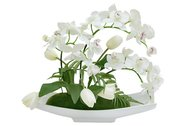 Декоративные цветы Орхидея белая c тюльпанами на подставке, 46х26х38 см