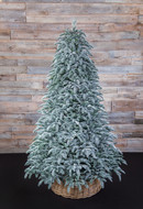 Triumph Tree Ель Нормандия пушистая 100% литая, 185 см, заснеженная