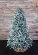 Triumph Tree Ель Нормандия пушистая 100% литая, 215 см, заснеженная