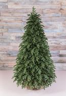 Triumph Tree Ель Царская 100% литая, 185 см, зеленая