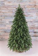 Triumph Tree Ель Царская 100% литая, 215 см, зеленая