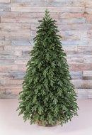 Triumph Tree Ель Царская 100% литая, 230 см, зеленая