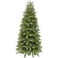 Triumph Tree Ель Уэльская, 215 см, зеленая