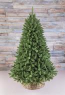 Triumph Tree Ель Лесная Красавица, 185 см, голубая