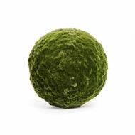 Treez Декор Шар из мха, 50 см, зеленый