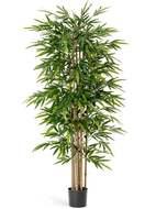 Treez Бамбук Новый, 210 см, зеленый