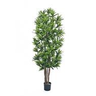 Treez Драцена Рефлекса, 150 см, зеленая