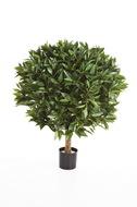 Treez Лавр круглый, 40х60 см, зеленый
