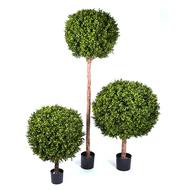 Treez Самшит Шар Штамб уличный, 105х40 см, зеленый