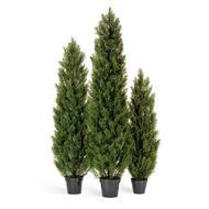 Treez Туя уличная Эйр Элеганс, 120 см, зеленая