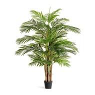Treez Пальма Арека Катеху де Люкс Sensitive Botanic, 5 стволов 39 листов, 190 см