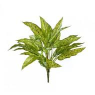 Аглаонема куст Sensitive Botanic, 30 листов, 40 см, зелено-желтая