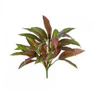 Treez Драцена бордово-зеленая куст Sensitive Botanic, 30 листов, 40 см