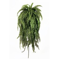 Treez Папоротник Бостон большой свисающий, 64 листа, 150 см