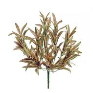 Treez Спайдер-драцена куст, 30 см, нежно-желто-зелено-розовый