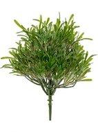 Treez Трава Розмари Фэт, 16х17 см, куст зеленый