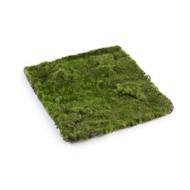 Treez Мох Квадратный MDP, 30х30 см