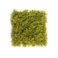 Treez Мох Ягель коврик, 25х25 см, светло-зеленый микс