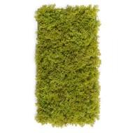 Мох Ягель коврик, 25х50 см, светло-зеленый микс