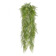 Treez Аспарагус куст ампельный, 65 см, зеленый