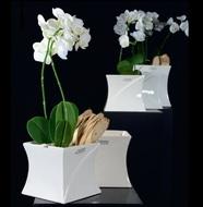 Tiziano Кашпо керамическое Mateo, 11х11х9 см, кремовое