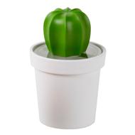 Qualy Емкость для хранения Cacnister с ложкой, белая с зеленым