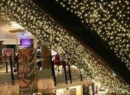 Globall Concept Световой занавес Curtainlight LED влагозащищенный, 2x6 м, 980 теплых белых LED
