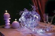 Globall Concept Светодиодная гирлянда Nature Light LED, 1.5 м, 24 LED
