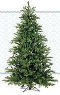 Black Box Сосна Ирландская, 185 см, зеленая