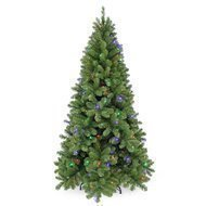 Triumph Tree Ель Шервуд Премиум, 155 см, 120 ламп, зеленая