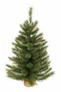Triumph Tree Сосна Сказочная, 60 см, светло-зеленая, в мешочке