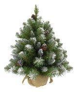 Triumph Tree Ель Императрица с шишками, 60 см, в мешочке, заснеженная