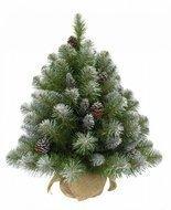 Triumph Tree Ель Императрица с шишками, 90 см, в мешочке, заснеженная