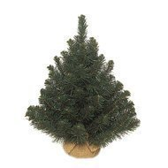 Triumph Tree Ель Альпийская, 45 см, в мешочке, зеленая