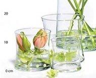 Hakbijl Glass Ваза Liam, 10х10 см