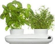 Sagaform Двойной горшок для зелени Herb, 26х12х7 см