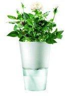 Eva Solo Горшок для растений Herb pot, матово-белый, 11x17.5 см