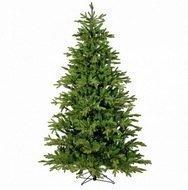 Black Box Сосна Ирландская, 230 см, зелёная